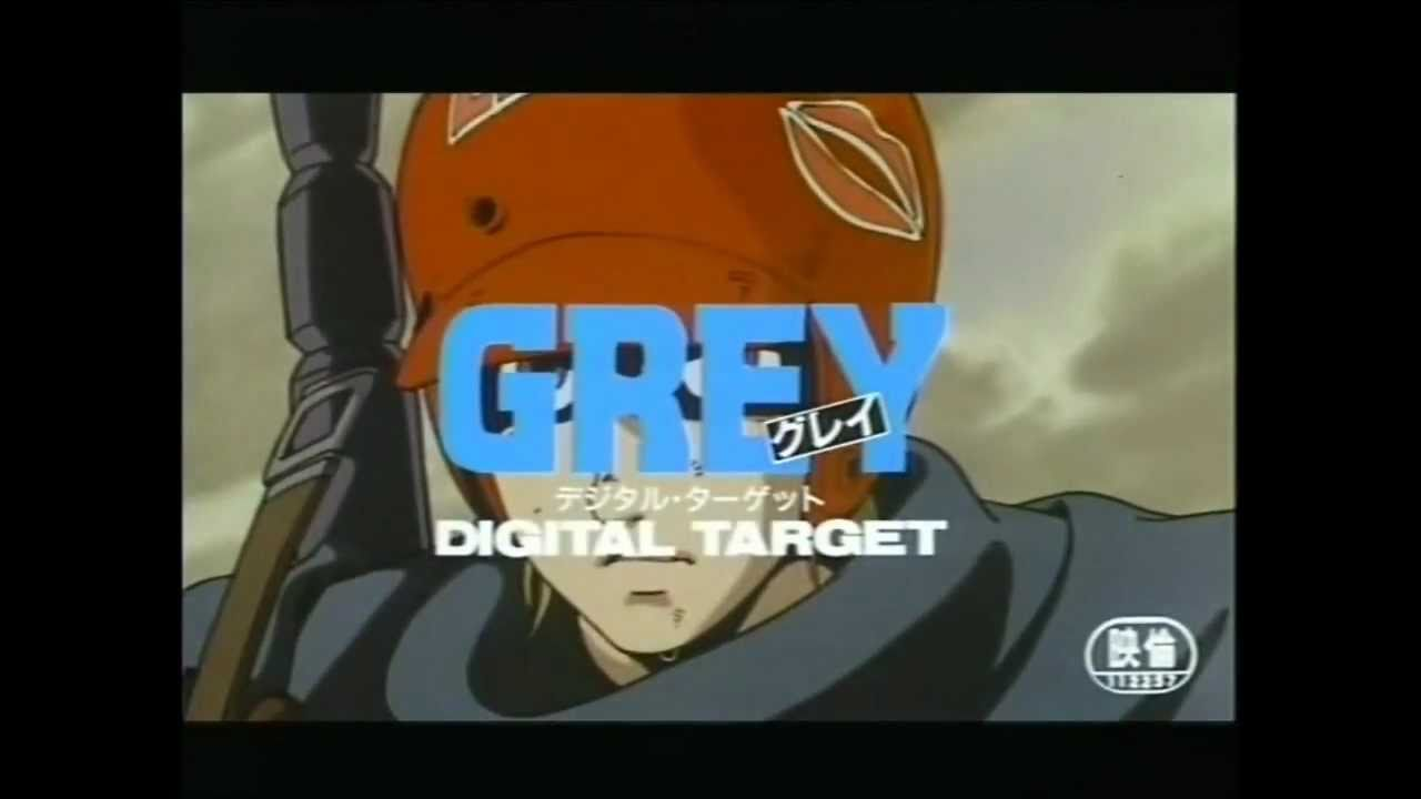 digitaltarget